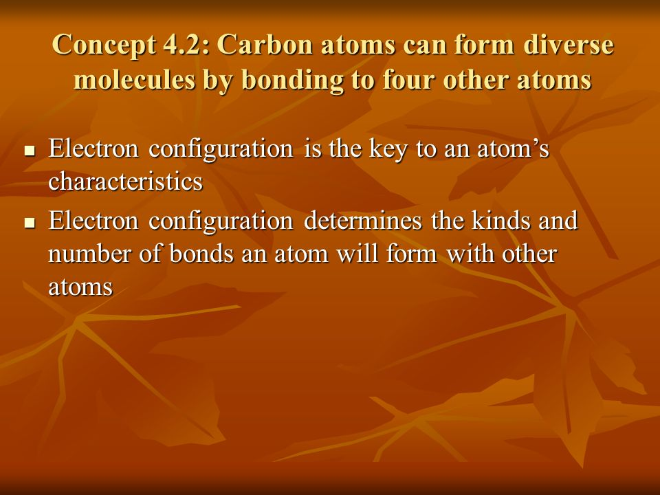 Chemistry of Life Organic chemistry is the study of carbon compounds Organic chemistry is the study of carbon compounds C atoms are versatile building