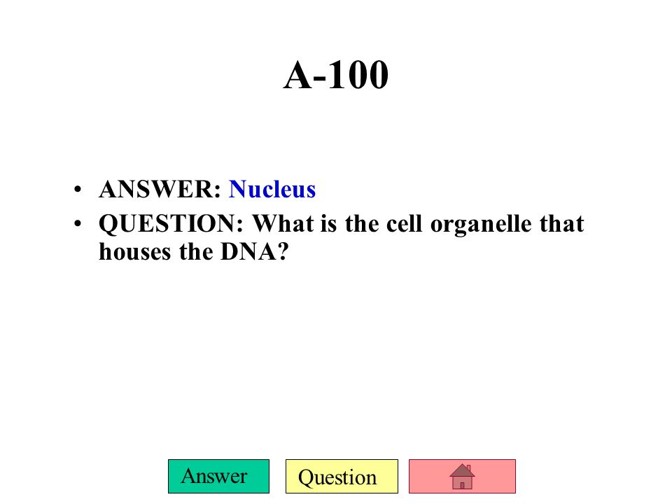 Question Answer A-100 ANSWER: Nucleus QUESTION: What is the cell organelle that houses the DNA?
