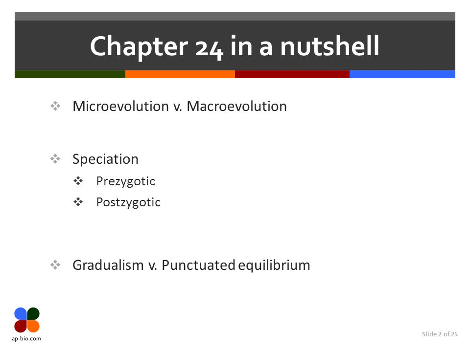 Slide 2 of 25 Chapter 24 in a nutshell Microevolution v. Macroevolution Speciation Prezygotic Postzygotic Gradualism v. Punctuated equilibrium