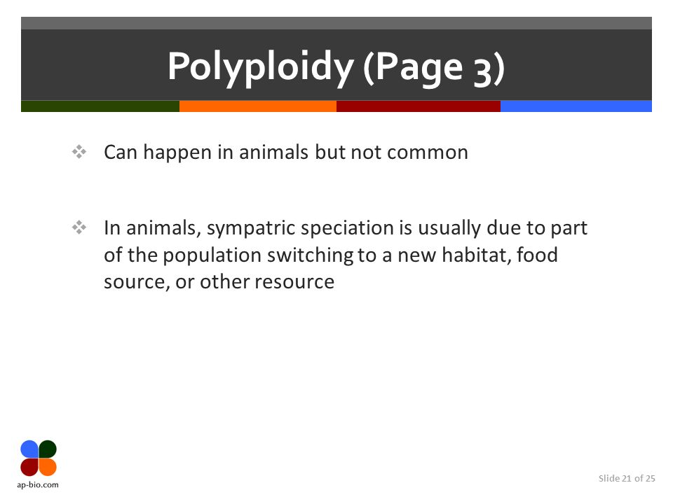Slide 21 of 25 Polyploidy (Page 3) Can happen in animals but not common In animals, sympatric speciation is usually due to part of the population switching to a new habitat, food source, or other resource