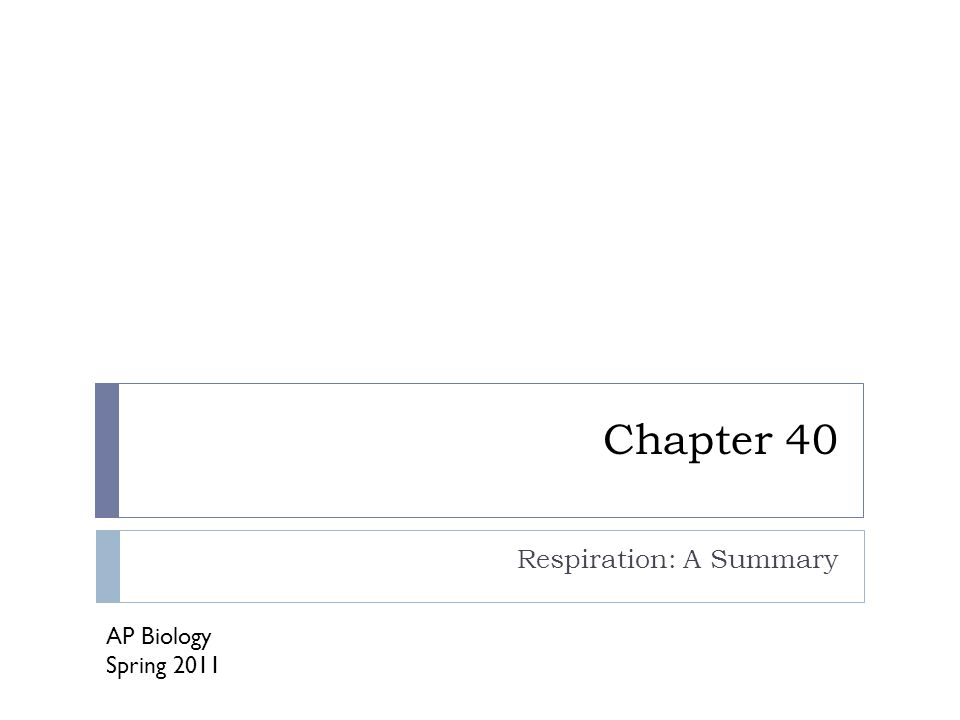 Chapter 40 Respiration: A Summary AP Biology Spring 2011