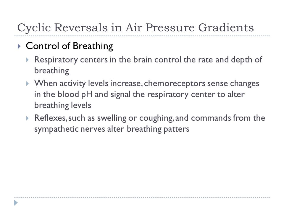 Cyclic Reversals in Air Pressure Gradients Control of Breathing Respiratory centers in the brain control the rate and depth of breathing When activity