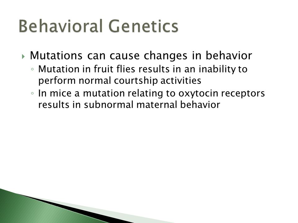 Mutations can cause changes in behavior Mutation in fruit flies results in an inability to perform normal courtship activities In mice a mutation rela