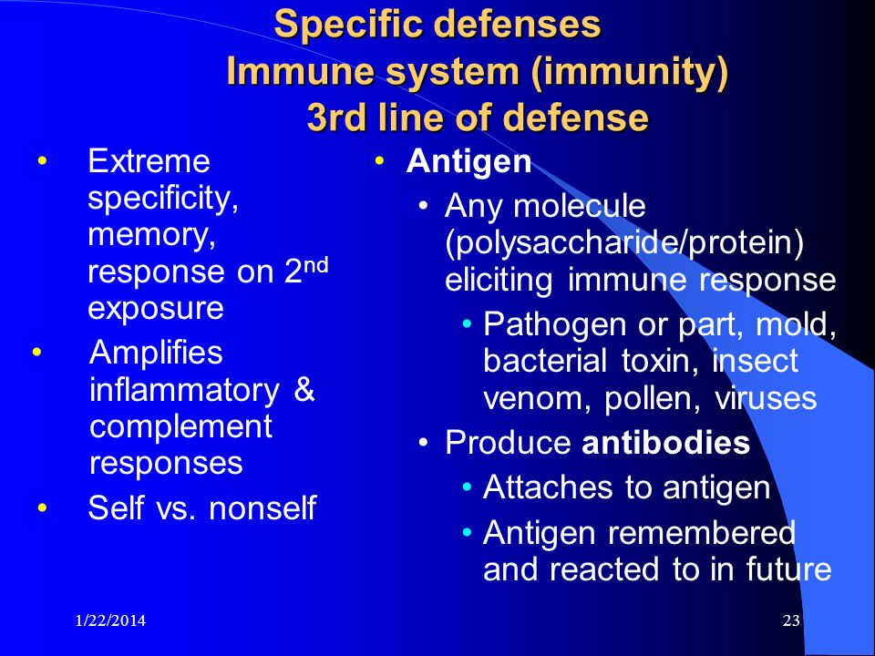 Specific defenses Immune system (immunity) 3rd line of defense Extreme specificity, memory, response on 2 nd exposure Amplifies inflammatory & complem