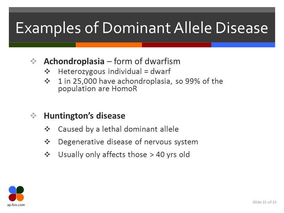 Slide 21 of 23 Examples of Dominant Allele Disease Achondroplasia – form of dwarfism Heterozygous individual = dwarf 1 in 25,000 have achondroplasia,