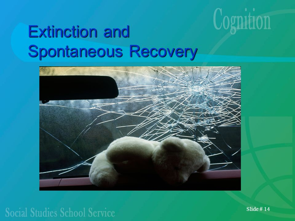 Slide # 14 Extinction and Spontaneous Recovery