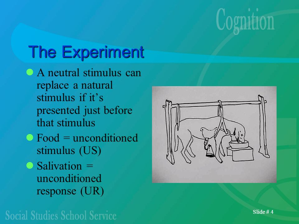 Slide # 4 The Experiment A neutral stimulus can replace a natural stimulus if its presented just before that stimulus Food = unconditioned stimulus (U