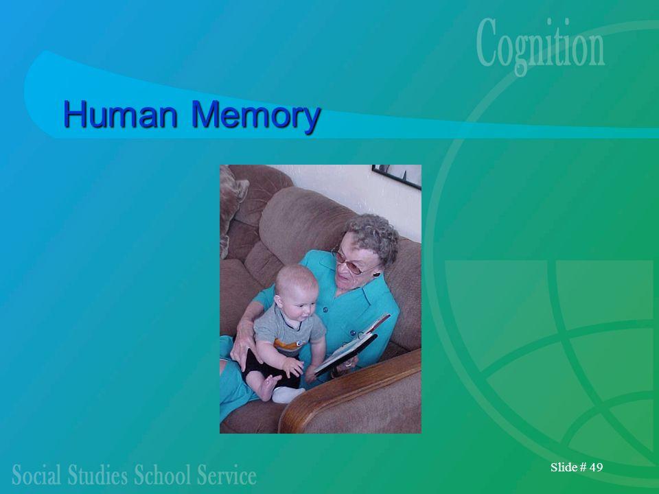 Slide # 49 Human Memory