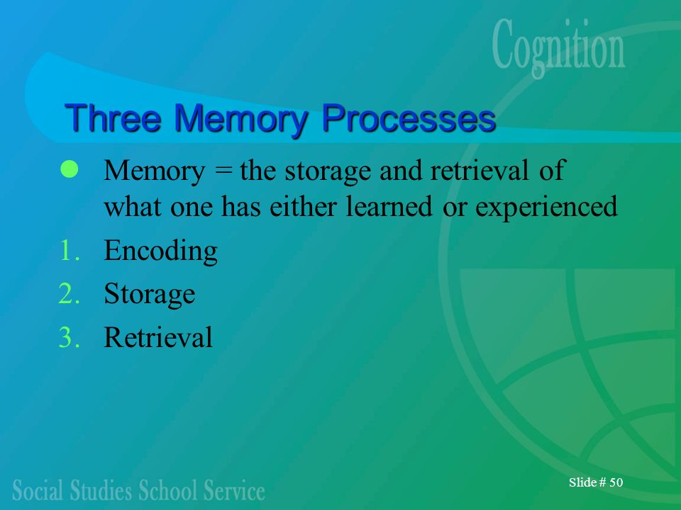 Slide # 50 Three Memory Processes Memory = the storage and retrieval of what one has either learned or experienced 1.Encoding 2.Storage 3.Retrieval