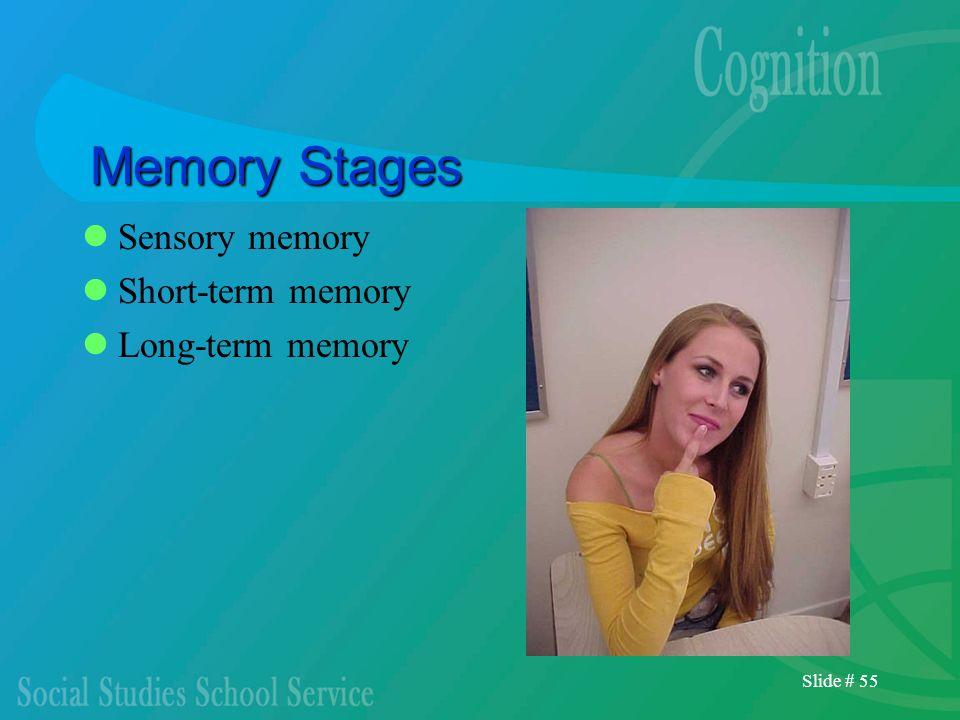 Slide # 55 Memory Stages Sensory memory Short-term memory Long-term memory