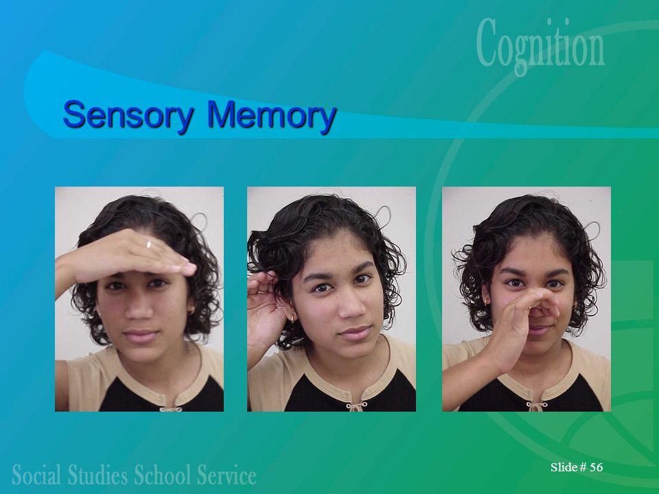 Slide # 56 Sensory Memory