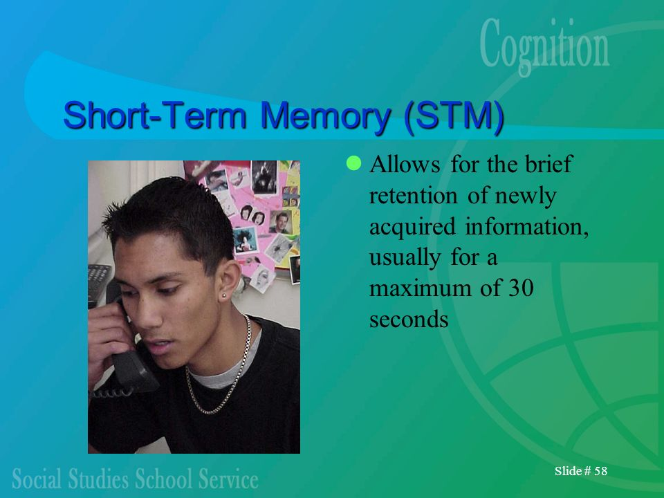 Slide # 58 Short-Term Memory (STM) Allows for the brief retention of newly acquired information, usually for a maximum of 30 seconds