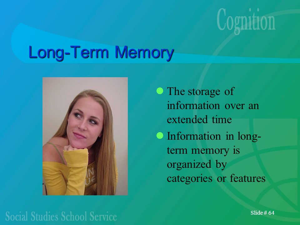 Slide # 64 Long-Term Memory The storage of information over an extended time Information in long- term memory is organized by categories or features