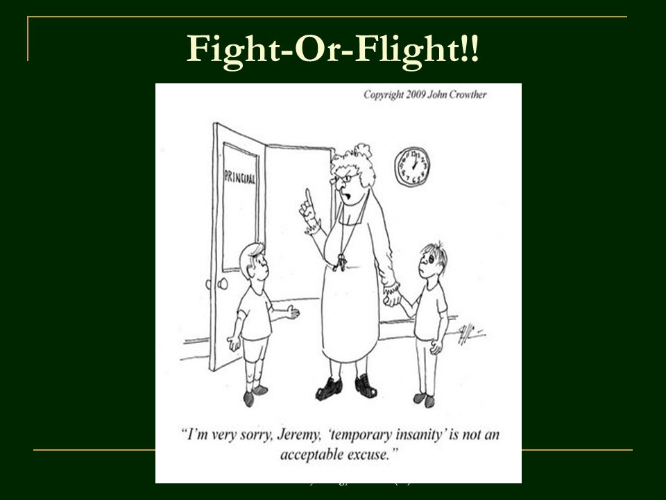 ©John Wiley & Sons, Inc. 2007 Huffman: Psychology in Action (8e) Fight-Or-Flight!!
