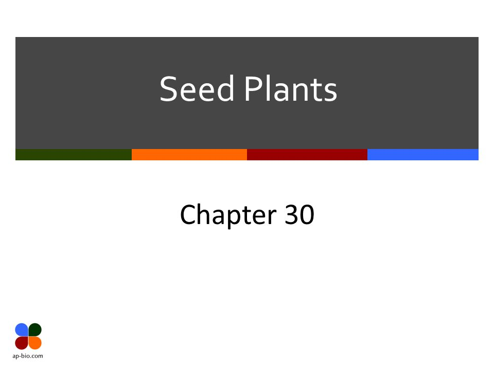 Seed Plants Chapter 30