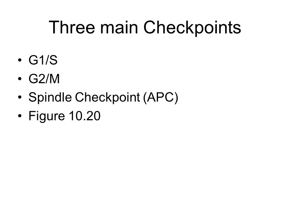 Three main Checkpoints G1/S G2/M Spindle Checkpoint (APC) Figure 10.20