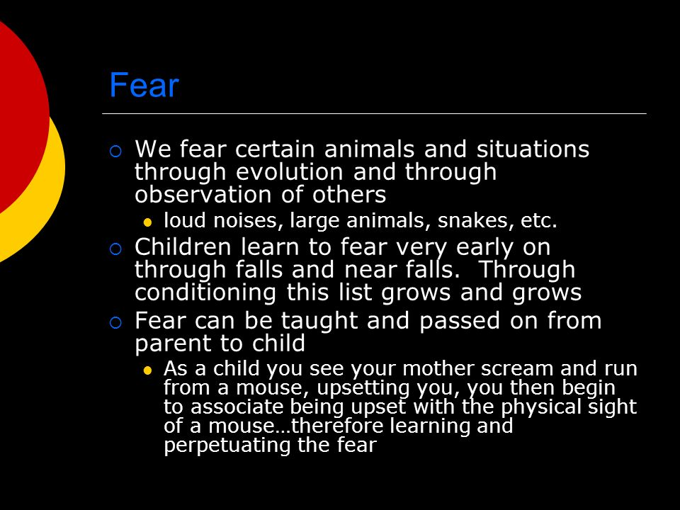 Fear We fear certain animals and situations through evolution and through observation of others loud noises, large animals, snakes, etc. Children lear