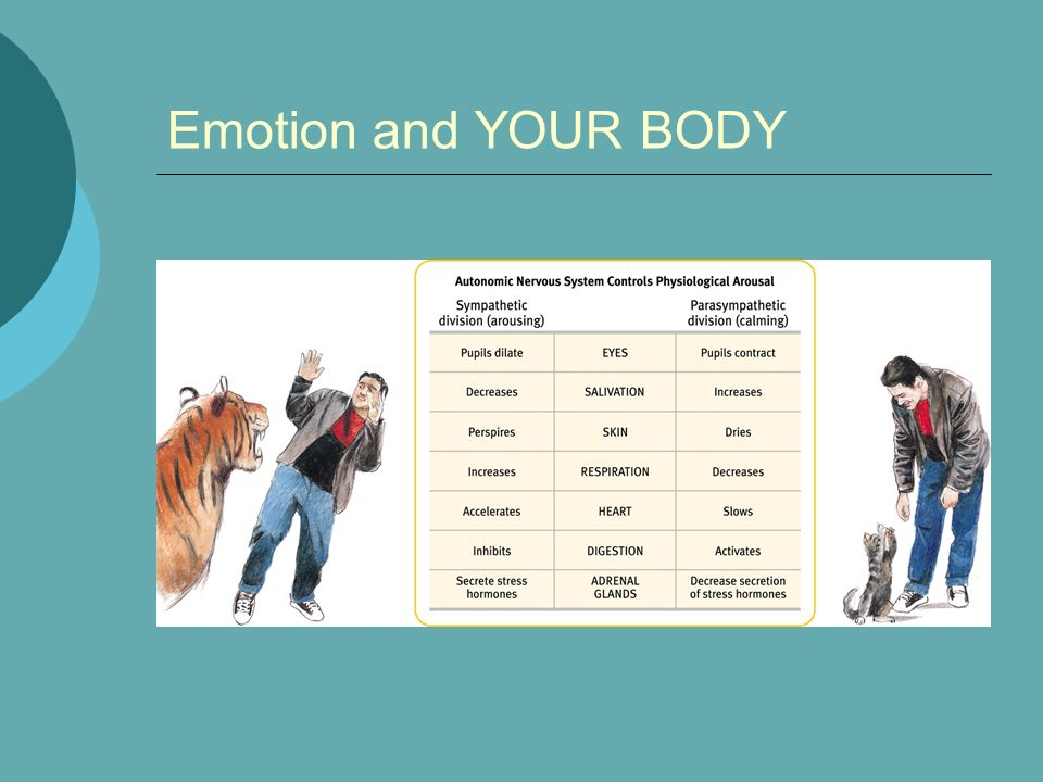 Emotion and YOUR BODY