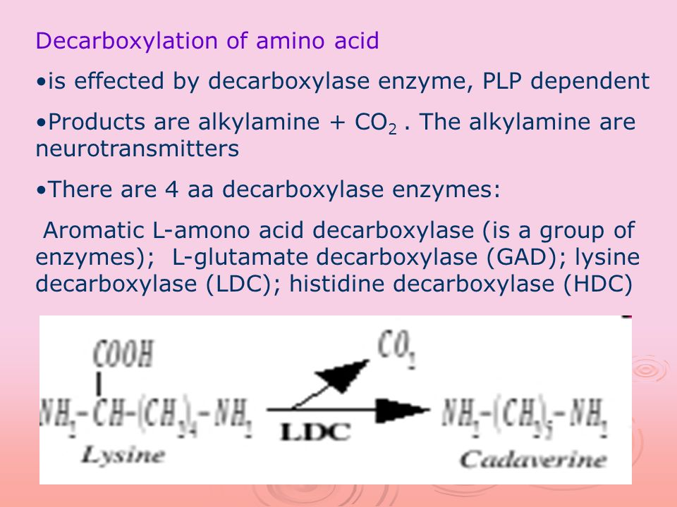 Decarboxylation of amino acid is effected by decarboxylase enzyme, PLP dependent Products are alkylamine + CO 2. The alkylamine are neurotransmitters