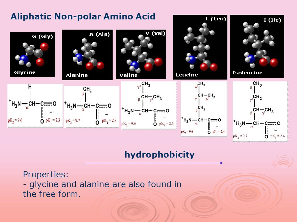 Aliphatic Non-polar Amino Acid hydrophobicity Properties: - glycine and alanine are also found in the free form.