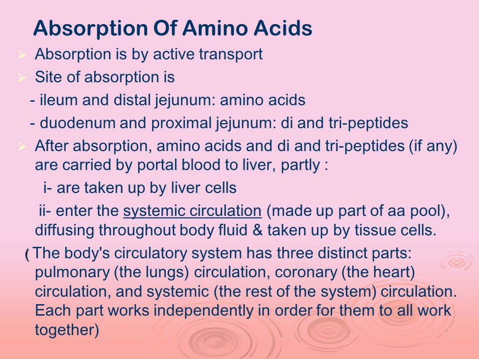 Absorption Of Amino Acids Absorption is by active transport Site of absorption is - ileum and distal jejunum: amino acids - duodenum and proximal jeju