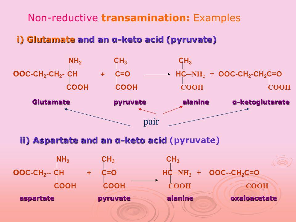 i) Glutamate and an α-keto acid (pyruvate) i) Glutamate and an α-keto acid (pyruvate) ii) Aspartate and an α-keto acid ii) Aspartate and an α-keto acid (pyruvate) NH 2 CH 3 CH 3 OO C-CH 2 -CH 2 - CH + C=O HC NH 2 + OOC-CH 2 -CH 2 C=O COOH COOH COOH COOH Glutamate pyruvate alanine α-ketoglutarate Glutamate pyruvate alanine α-ketoglutarate NH 2 CH 3 CH 3 OO C-CH 2 -- CH + C=O HC NH 2 + OOC--CH 2 C=O COOH COOH COOH COOH aspartate pyruvate alanine oxaloacetate aspartate pyruvate alanine oxaloacetate pair Non-reductive transamination: Examples