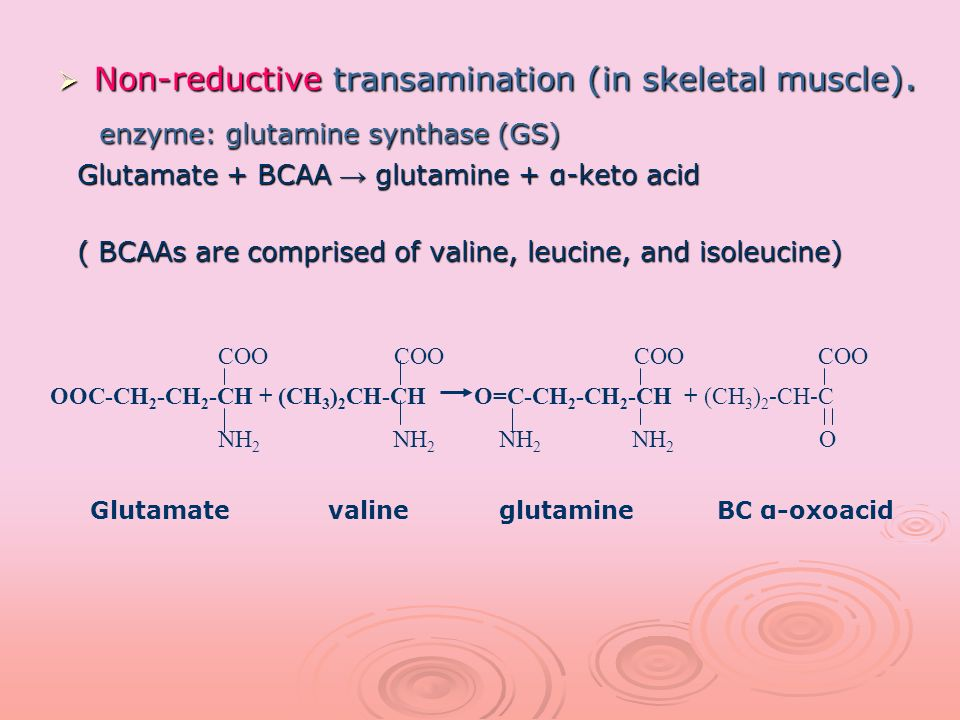 Non-reductive transamination (in skeletal muscle). Non-reductive transamination (in skeletal muscle). enzyme: glutamine synthase (GS) enzyme: glutamin