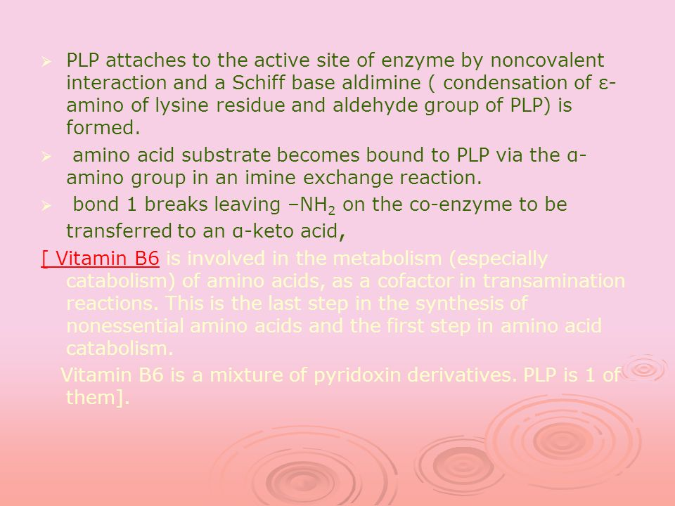 PLP attaches to the active site of enzyme by noncovalent interaction and a Schiff base aldimine ( condensation of ε- amino of lysine residue and aldeh