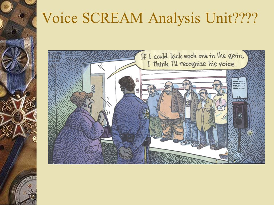 Optional Services: Voice Print Analysis Unit Use sound *spectrograph to identify voices – Telephoned threats – Taped recorded messages – Even basic id