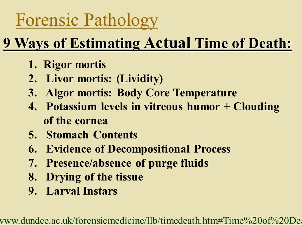 HW: Research and Identify How investigators estimate time of death..