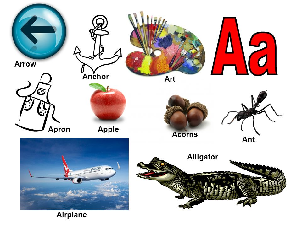 Art Apple Acorns Airplane Alligator Anchor Ant Apron Arrow