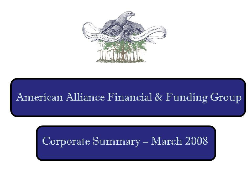 American Alliance Financial & Funding Group Corporate Summary – March 2008
