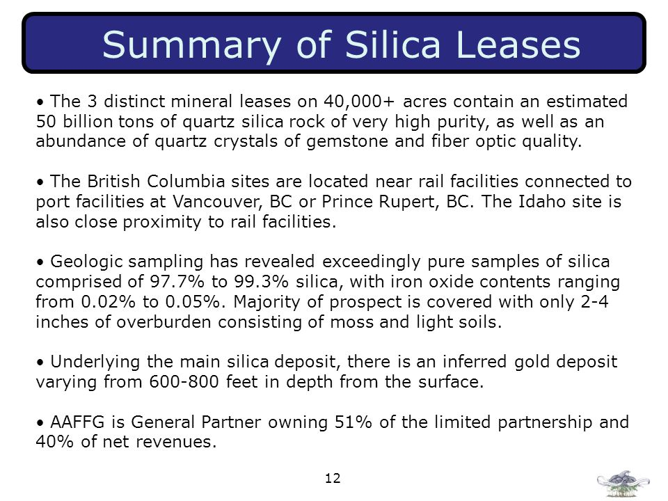 12 Summary of Silica Leases The 3 distinct mineral leases on 40,000+ acres contain an estimated 50 billion tons of quartz silica rock of very high pur