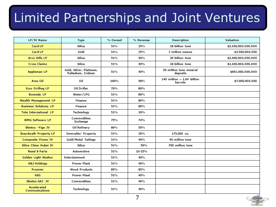 7 Limited Partnerships and Joint Ventures LP/JV NameType% Owned% RevenueDescriptionValuation Card LPSilica51%35%18 billion tons$2,160,000,000,000 Card