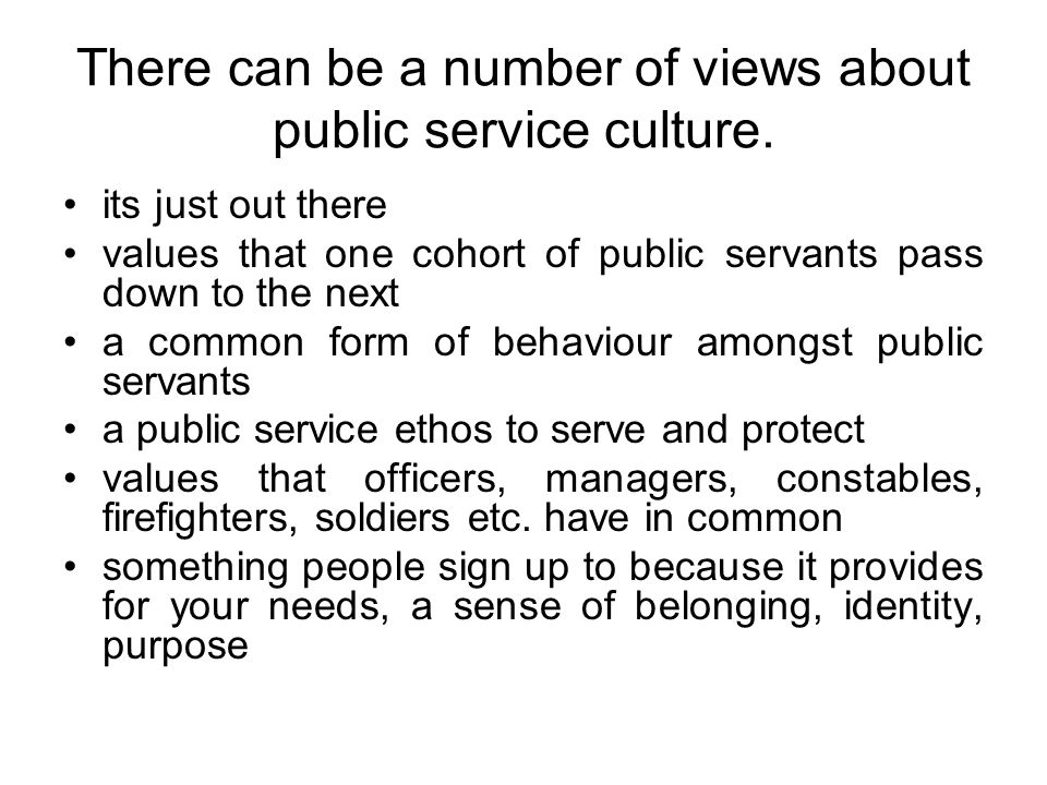 There can be a number of views about public service culture.