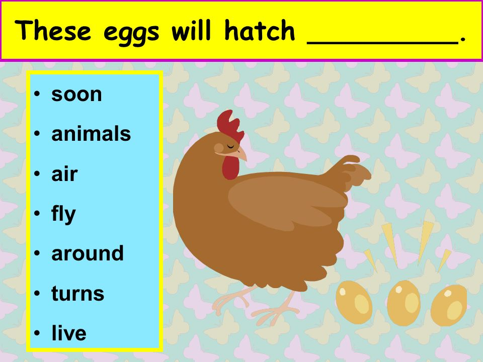 These eggs will hatch _________. soon animals air fly around turns live