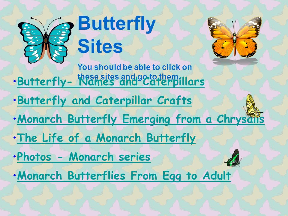Butterfly Sites You should be able to click on these sites and go to them.