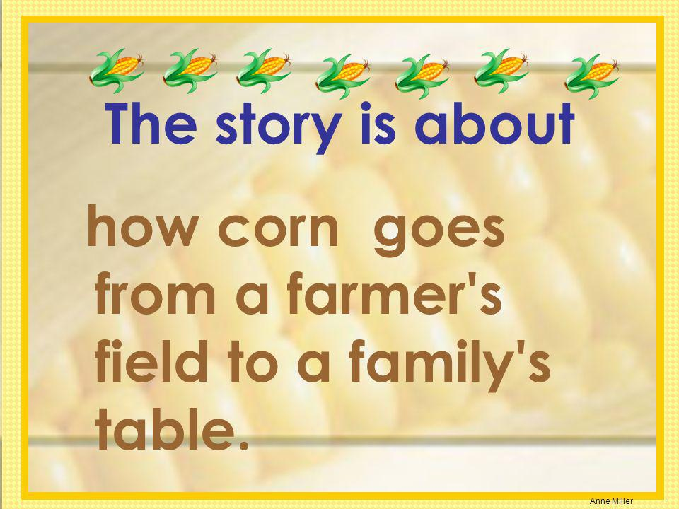 Anne Miller The story is about how corn goes from a farmer's field to a family's table.