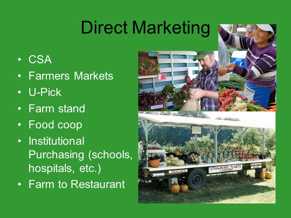 Direct Marketing CSA Farmers Markets U-Pick Farm stand Food coop Institutional Purchasing (schools, hospitals, etc.) Farm to Restaurant