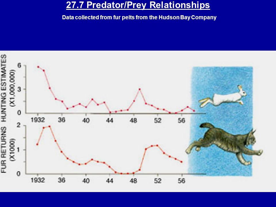 27.4 Predator-Prey Cycles