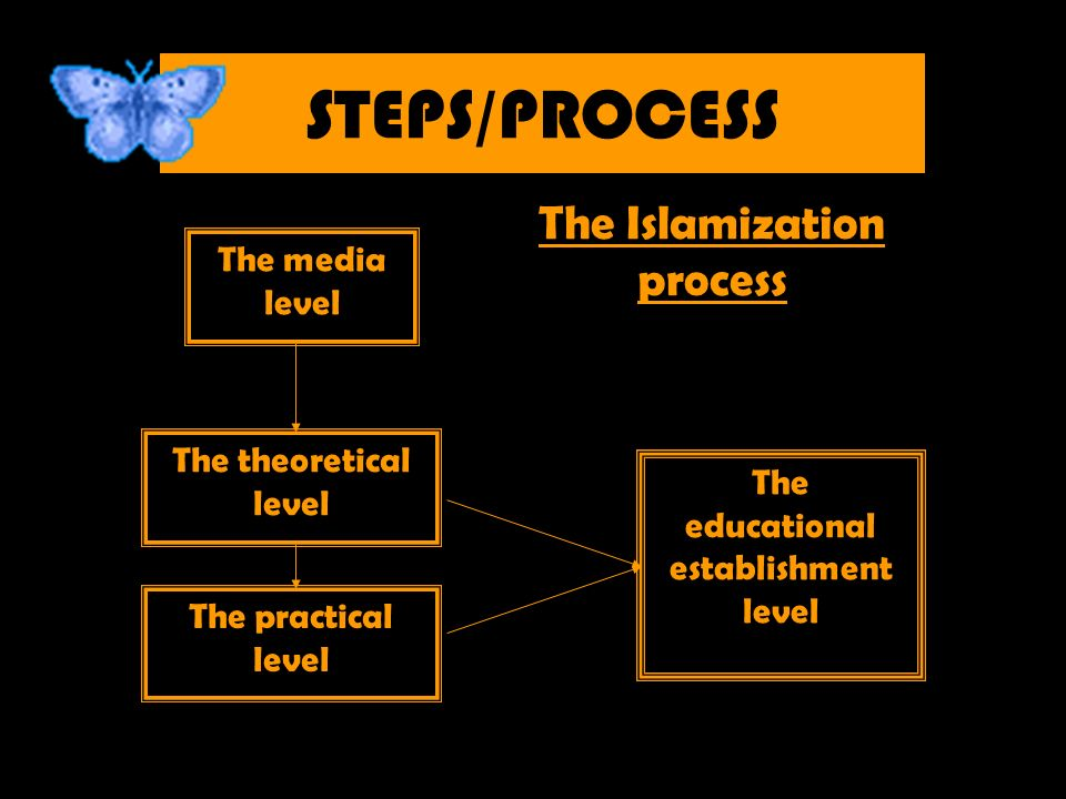 STEPS/PROCESS The media level The theoretical level The practical level The educational establishment level The Islamization process
