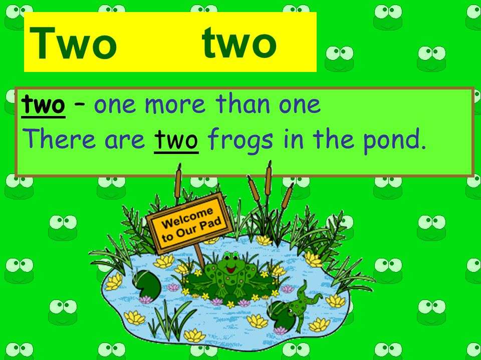 Two two – one more than one There are two frogs in the pond. two