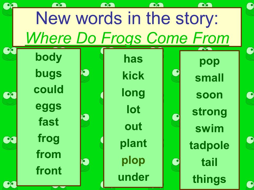New words in the story: Where Do Frogs Come From body bugs could eggs fast frog from front has kick long lot out plant plop under pop small soon strong swim tadpole tail things