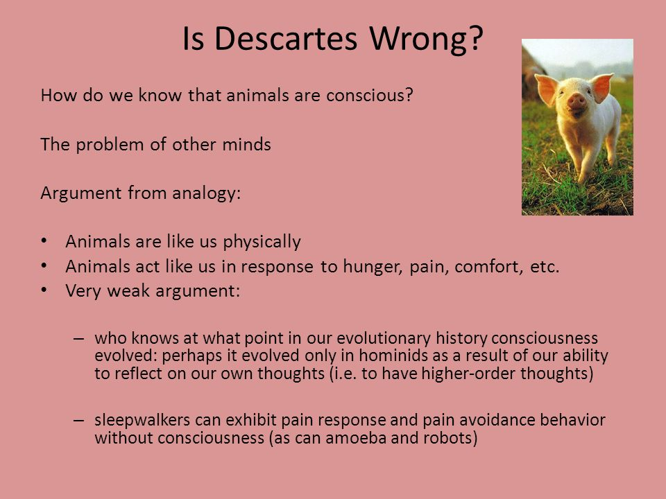 Is Descartes Wrong? How do we know that animals are conscious? The problem of other minds Argument from analogy: Animals are like us physically Animal