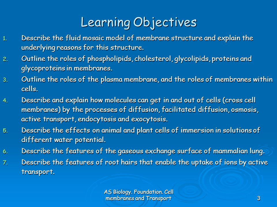 AS Biology. Foundation. Cell membranes and Transport3 Learning Objectives 1. Describe the fluid mosaic model of membrane structure and explain the und