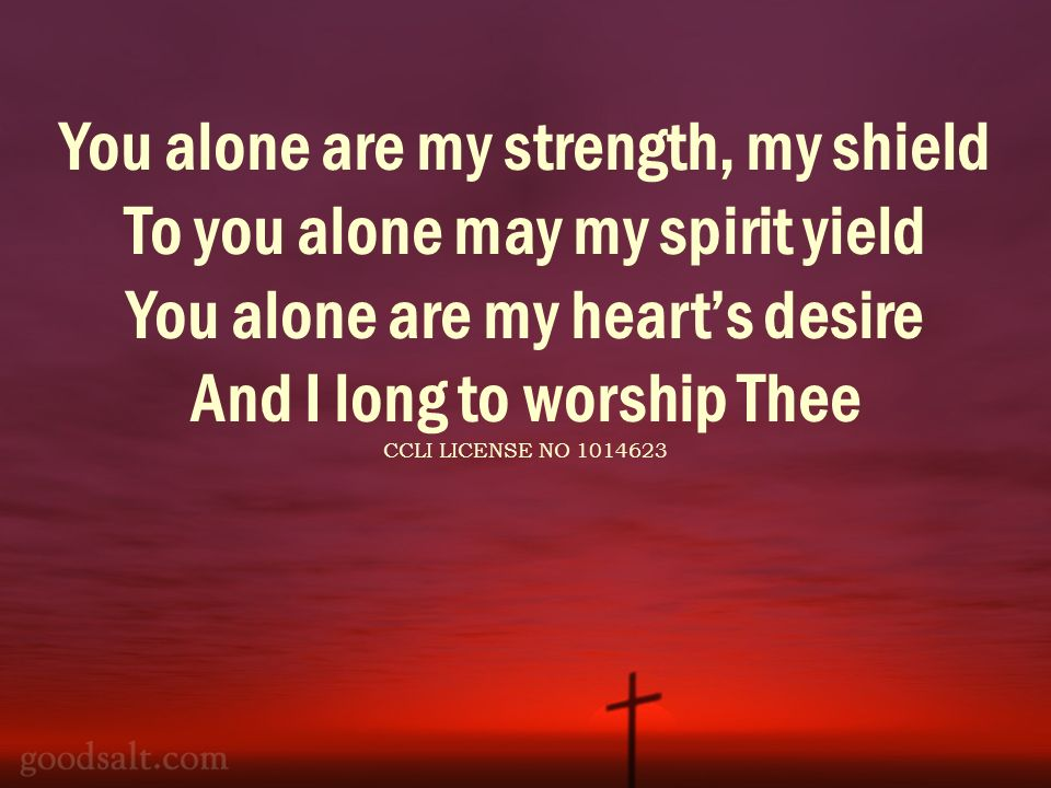 You alone are my strength, my shield To you alone may my spirit yield You alone are my hearts desire And I long to worship Thee CCLI LICENSE NO 1014623