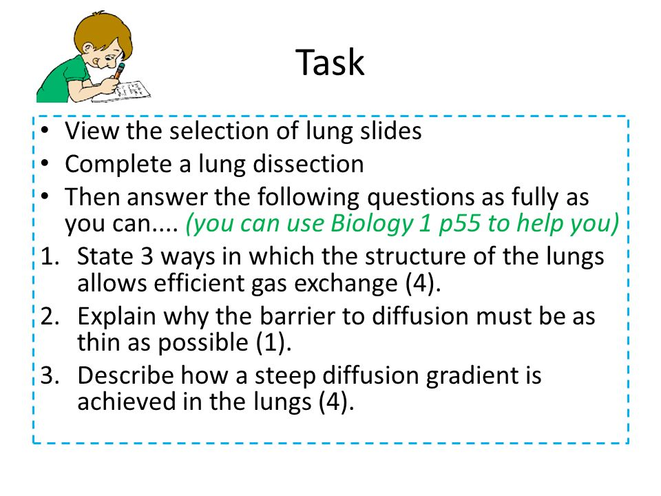 Task View the selection of lung slides Complete a lung dissection Then answer the following questions as fully as you can.... (you can use Biology 1 p