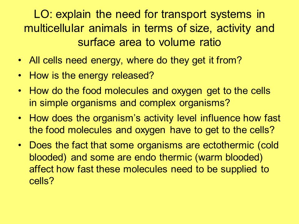 LO: explain the need for transport systems in multicellular animals in terms of size, activity and surface area to volume ratio All cells need energy,
