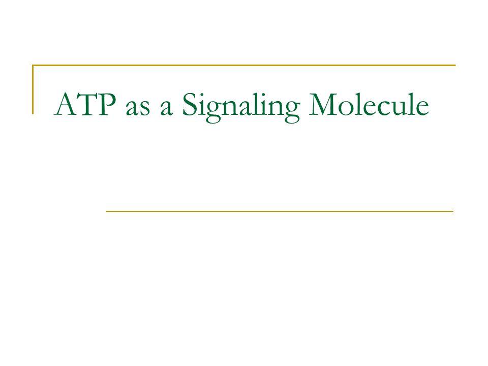 ATP as a Signaling Molecule