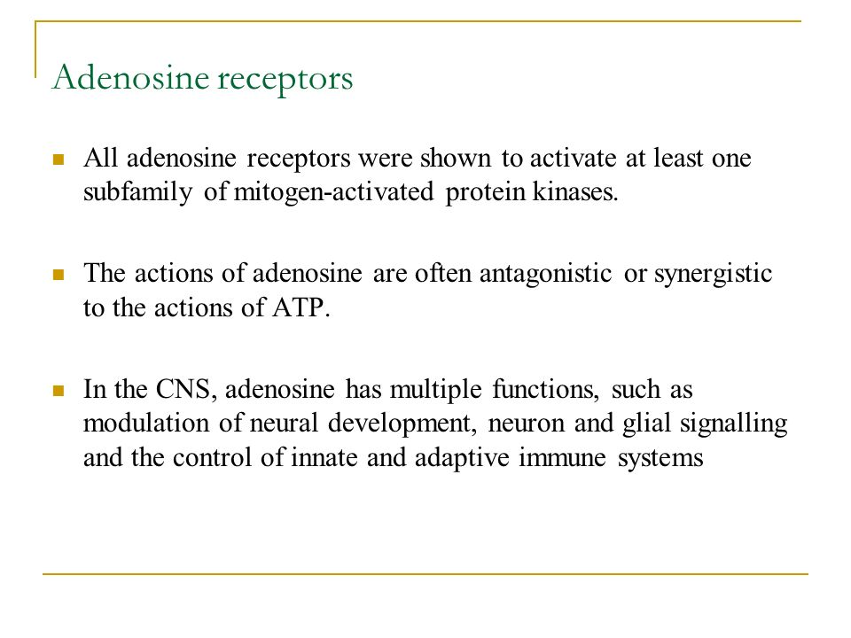 Adenosine receptors All adenosine receptors were shown to activate at least one subfamily of mitogen-activated protein kinases.